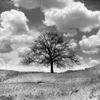 Lyotard: lo posmoderno y lo sublime