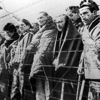 Viktor Frankl: ¿Puede la libertad perder sentido?